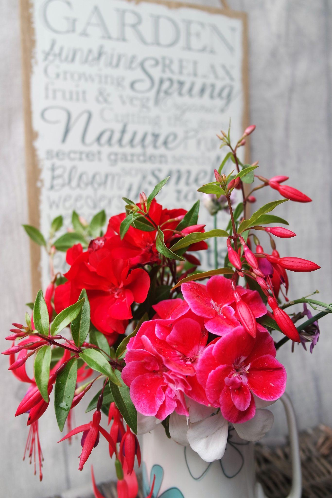 In a Vase on Monday – fuchsias, 5 favourite NW gardens